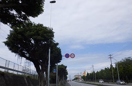 沖縄環状道路照明工事(H28)